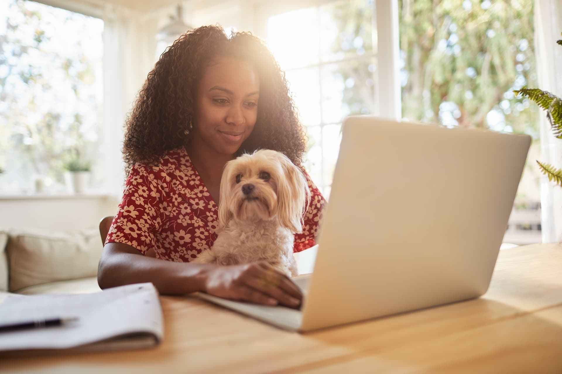 woman and dog in laptop